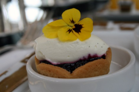 Blueberry chantilly tart