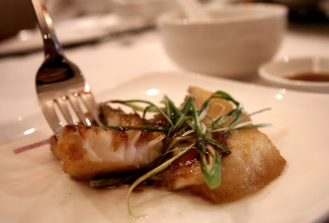 Pan Fried Cod Fish Fillet in Superior Soy Sauce