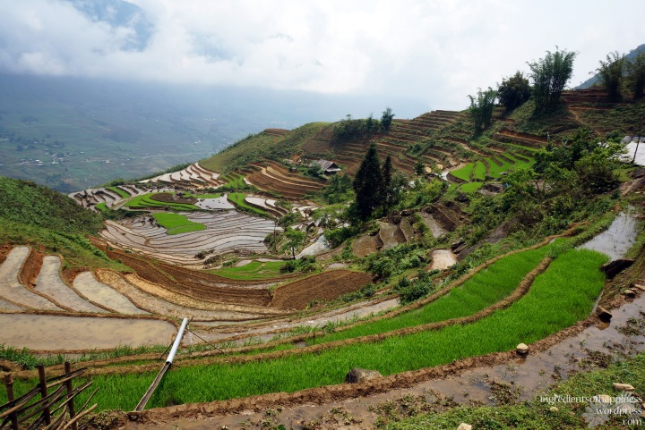 Memories of the breathtaking views of the beautiful Sapa will stay with me for a long time to come