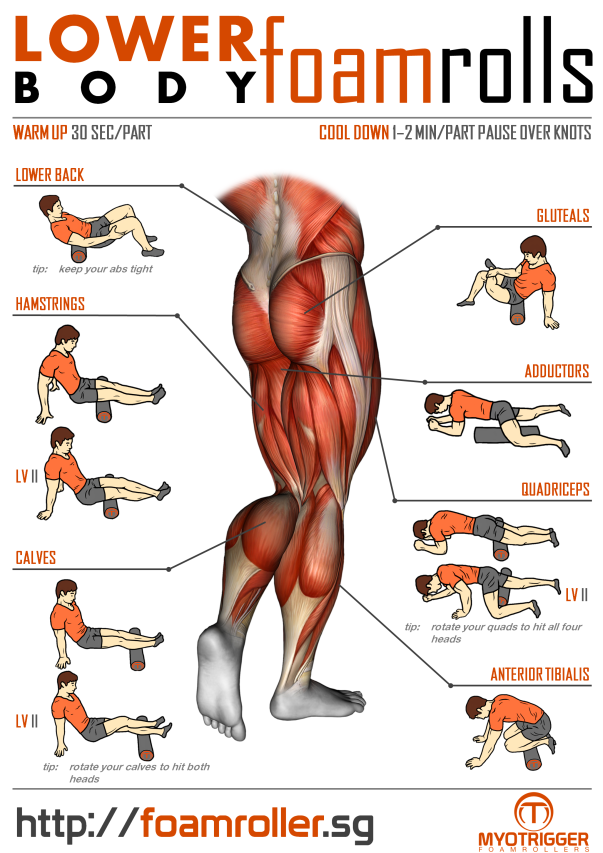 foam_roller_exercises_lower_body