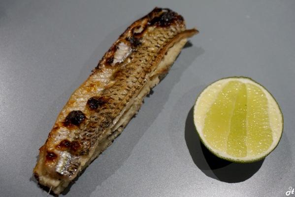 Black Barred Half Beak Fish